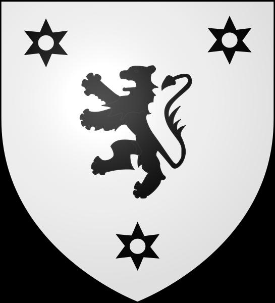 HENVIC